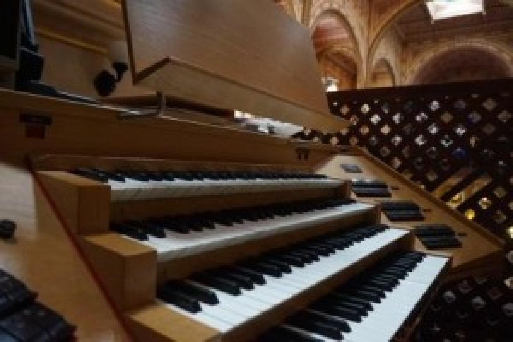 Az orgona története